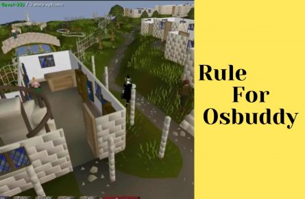 The 5-Minute Rule for Osbuddy