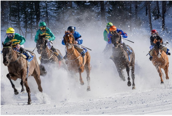 Guide to Betting In Horse Racing